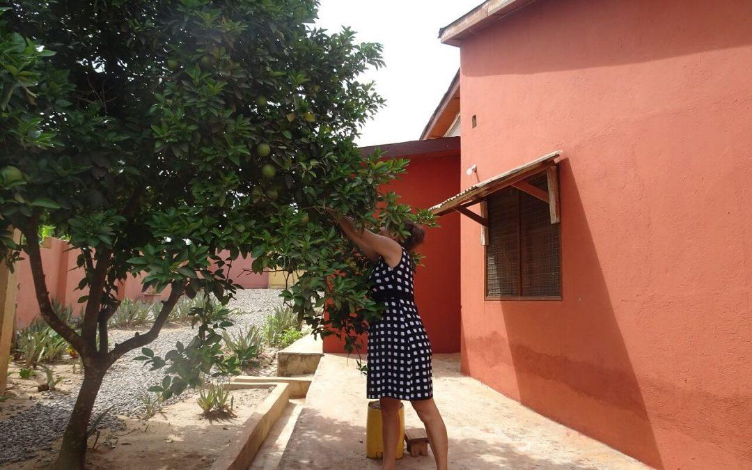 Patricia, Ghana coach, is sinaasappelen aan het plukken