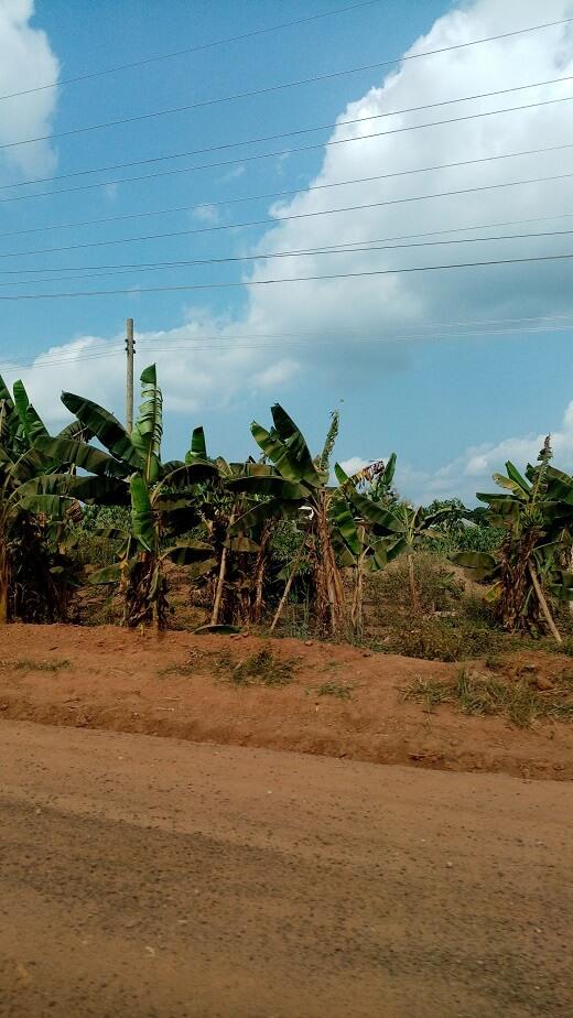 weer in Ghana