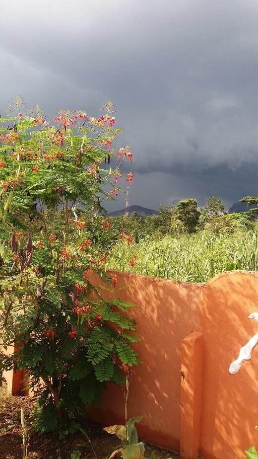 regen in Ghana